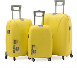 PP travel luggage.jpg